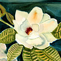 Magnolia by Janet Doggett