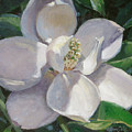 Magnolia by L Diane Johnson