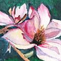 Magnolia by Marsha Woods