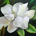 Magnolia Oil Painting by Chris Hobel