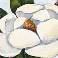 Magnolia On Blue by Elaine Hodges