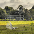 Magnolia Plantation House by Dustin K Ryan