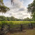 Magnolia Plantation South Carolina by Dustin K Ryan