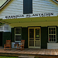 Magnolia Plantation Store by Judy Vincent