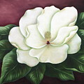 Magnolia by Ruth Bares