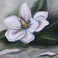 Magnolia Two - 2007 by Torrie Smiley