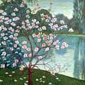 Magnolia by Wilhelm List