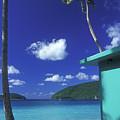 Maho Bay 1 by Pauline Walsh Jacobson