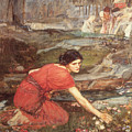 Maidens Picking Flowers By The Stream by John William Waterhouse