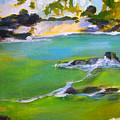 Maihai'ula North Beach by Richard Rochkovsky