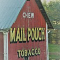 Mail Pouch Special by Judy Carr