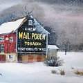Mail Pouch Tobacco Barn by Patrick Moyer