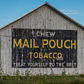Mail Pouch Tobacco Barn by Paul Freidlund
