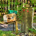 Mailbox On The Rural Country Road by Jeelan Clark