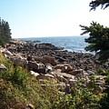 Maine Atlantic Ocean Coast by Holly Eads