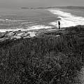 Maine Contemplation by Olivier Le Queinec