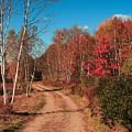 Maine October by Doug Mills