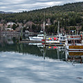 Maine Reflections by Karin Pinkham