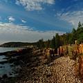 Maine Rocky Coast by Juergen Roth