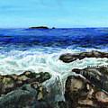 Maine Tidal Pool by Shana Rowe Jackson