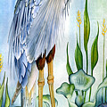 Majestic Blue Heron by Lyse Anthony