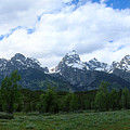 Majestic Grand Tetons by George Jones