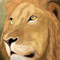 Majestic Lion by Gloria Dattolo