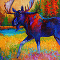 Majestic Monarch - Moose by Marion Rose
