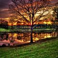 Majestic Sunrise Reflections Art by Reid Callaway