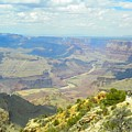 Majestic View by Loring Laven