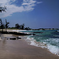Makalawena Beach by Pamela Walton