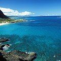 Makapuu Beach Park by Peter French - Printscapes