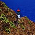 Makapu'u Lighthouse by Craig Wood