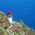 Makapu'u Lighthouse by Michael Peychich