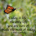 Make The Most Of Today by Kerri Farley