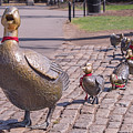 Make Way For The Ducklings by Jerry Fornarotto