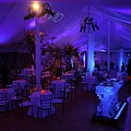 Make Your Events Great With Eventure by Eventure Group