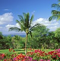 Makena Beach Golf Course by Peter French - Printscapes