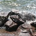Making A Splash by Anita Troy