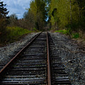 Making Tracks by Tikvah's Hope