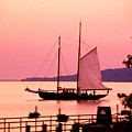 Malabar X Sailboat At Sunset by Roger Soule