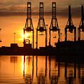 Malaga - Costa Del Sol - Andalucia - Spain - Port At Sunrise by Carlos Alkmin