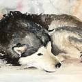 Malamute At Rest by Janae Lehto