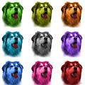 Malamute Dog Art - 6536 - Wb - M by James Ahn