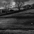 Malham Farm by Nigel Dudson