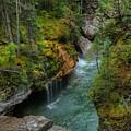 Maligne Canyon Falls Jasper National Park by Wayne Moran