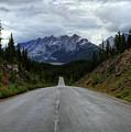 Maligne Lake Road Jasper National Park by Wayne Moran