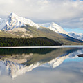 Malingne Lake Reflection, Jasper National Park  by Daryl L Hunter