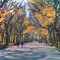 Mall Central Park New York City by George Zucconi