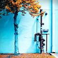 Mall Pipe by Steven Hlavac
